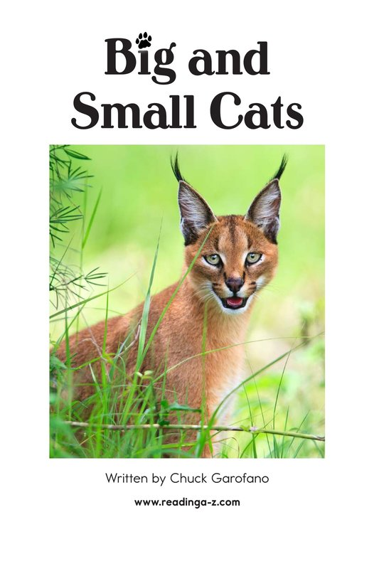Book Preview For Big and Small Cats Page 2