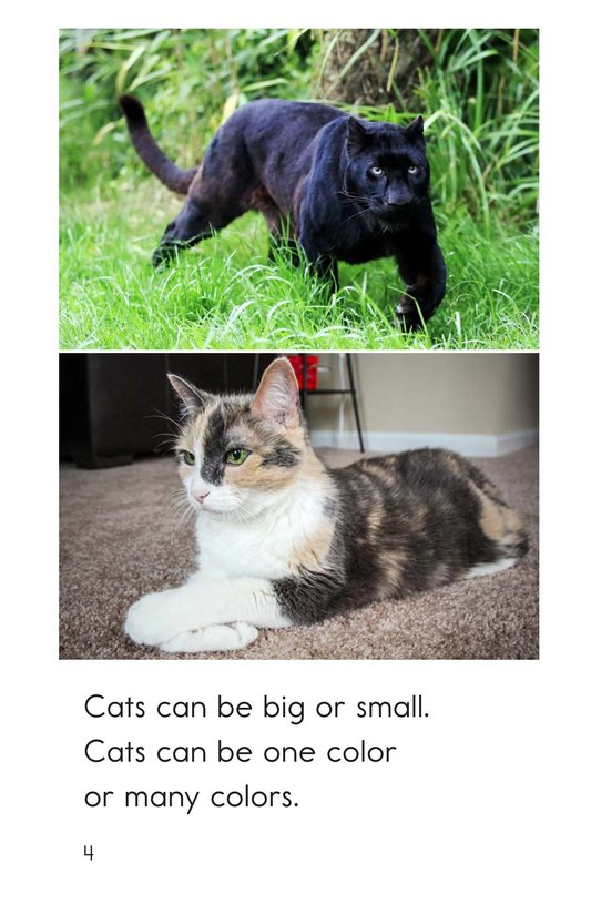 Book Preview For Big and Small Cats Page 4