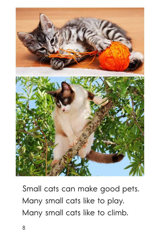 Book Preview For Big and Small Cats Page 8