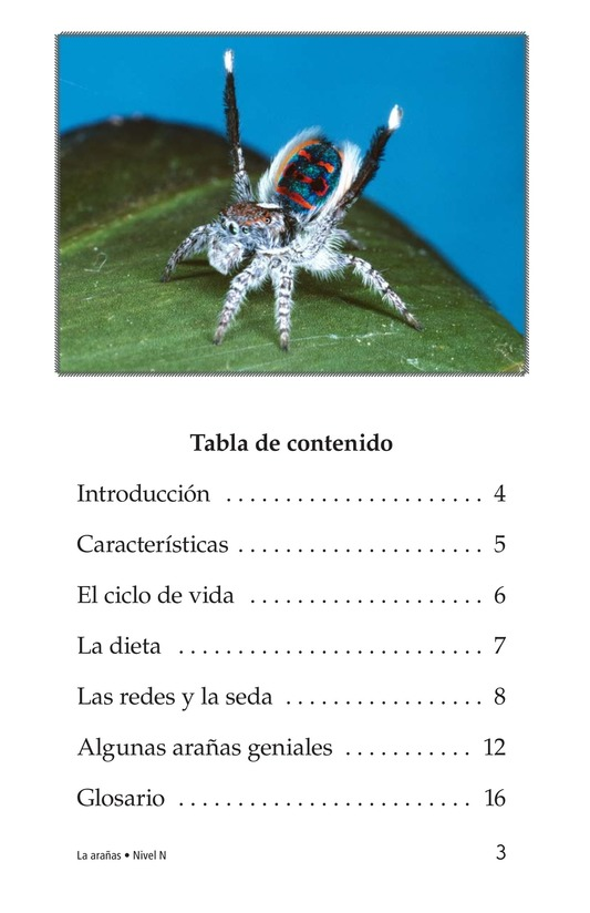 Book Preview For Spiders Page 3