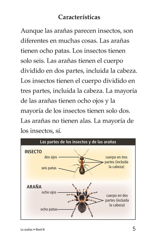 Book Preview For Spiders Page 5