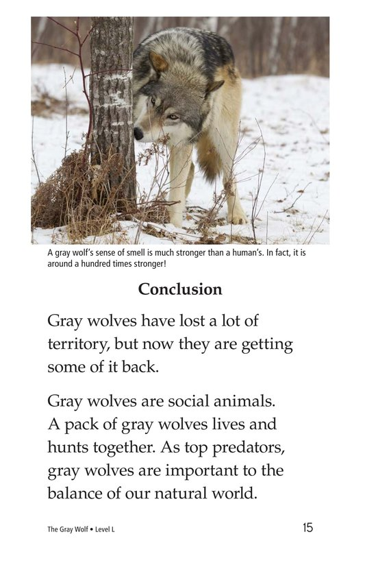 Book Preview For The Gray Wolf Page 15