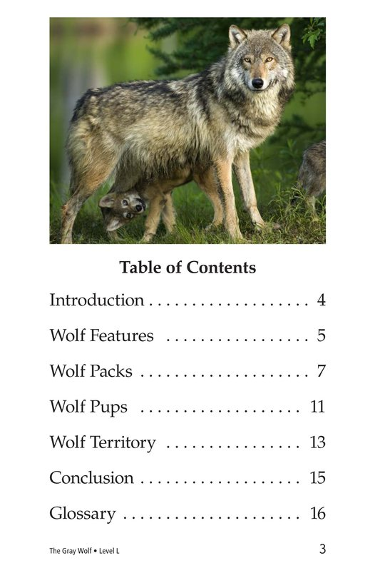 Book Preview For The Gray Wolf Page 3