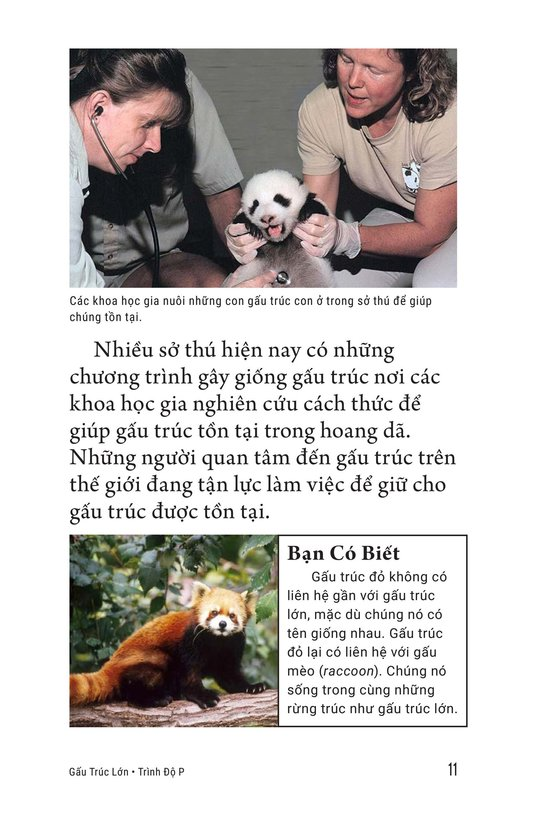 Book Preview For Giant Pandas Page 11