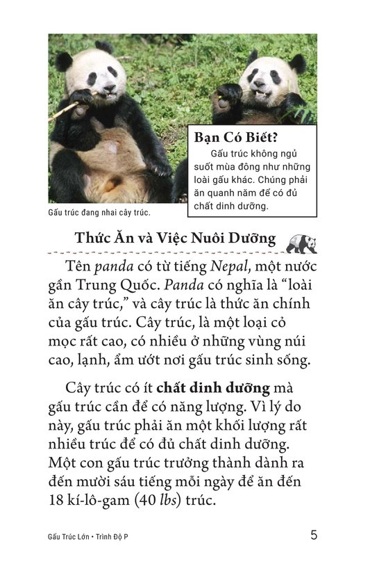 Book Preview For Giant Pandas Page 5