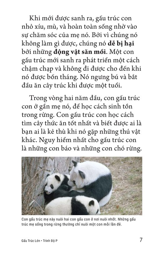 Book Preview For Giant Pandas Page 7