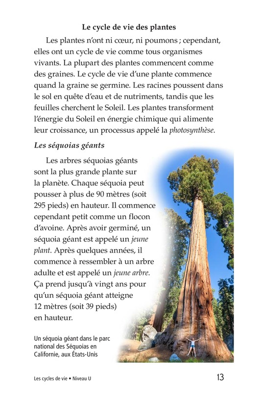 Book Preview For Life Cycles Page 13
