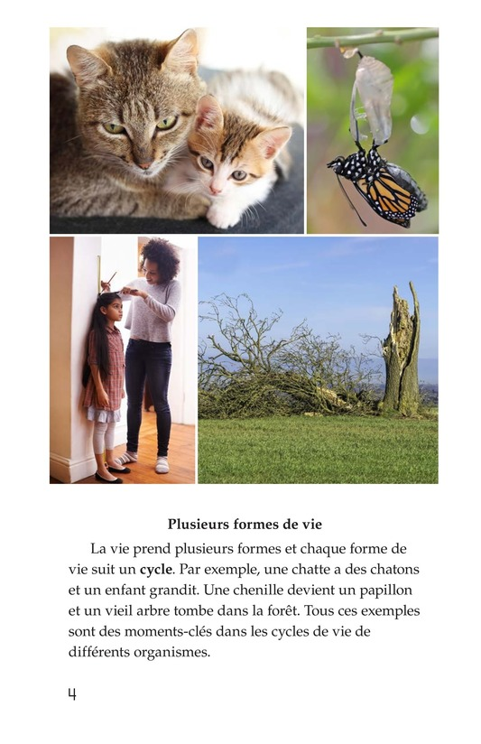 Book Preview For Life Cycles Page 4