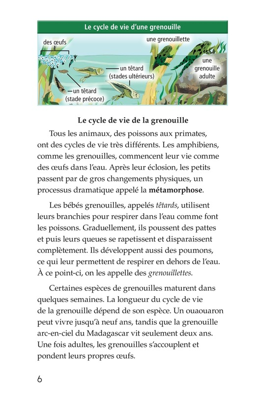 Book Preview For Life Cycles Page 6