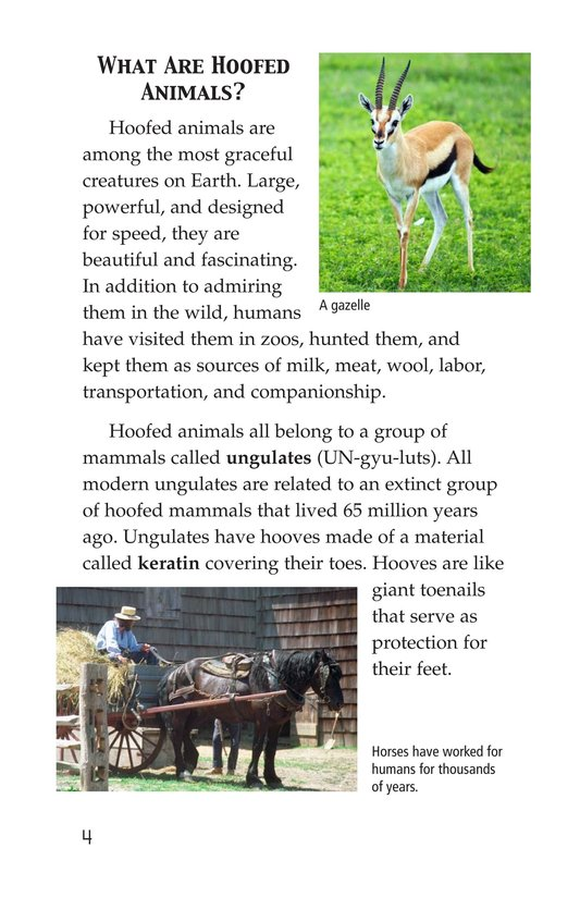 Book Preview For Hoofed Animals Page 4