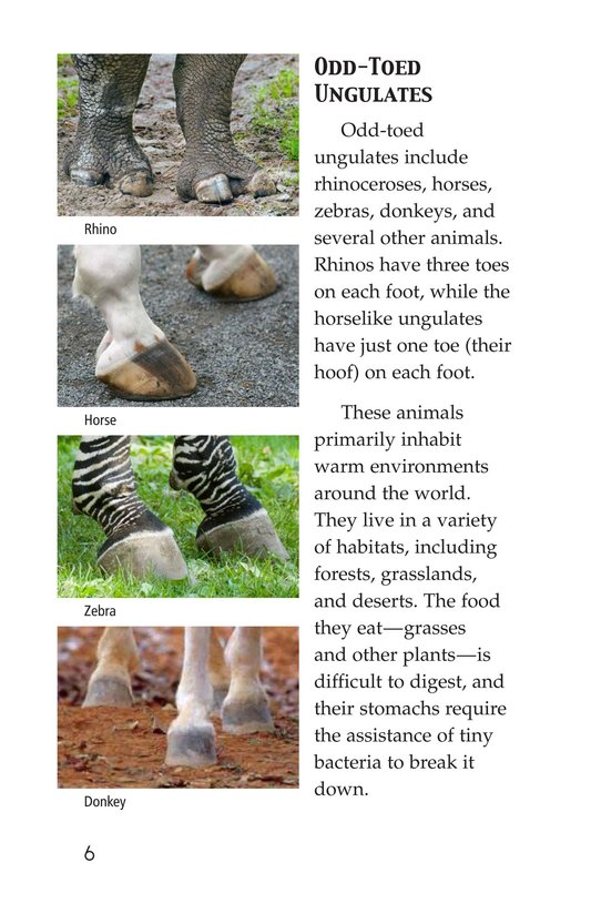 Book Preview For Hoofed Animals Page 6