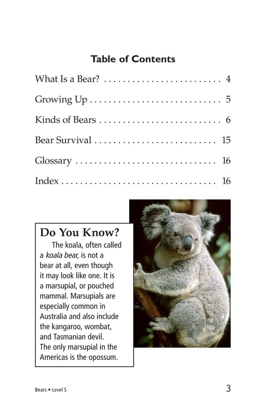 Book Preview For Bears Page 3