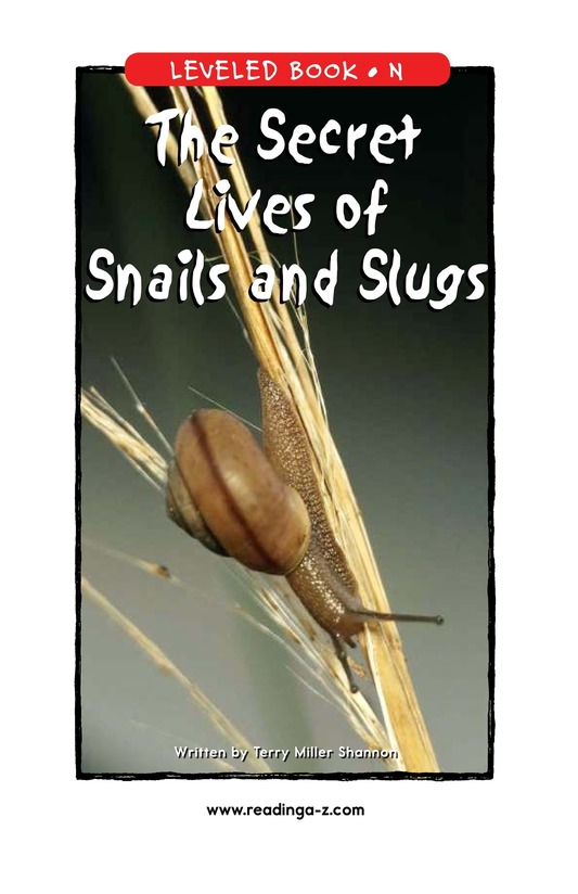 Book Preview For The Secret Lives of Snails and Slugs Page 1