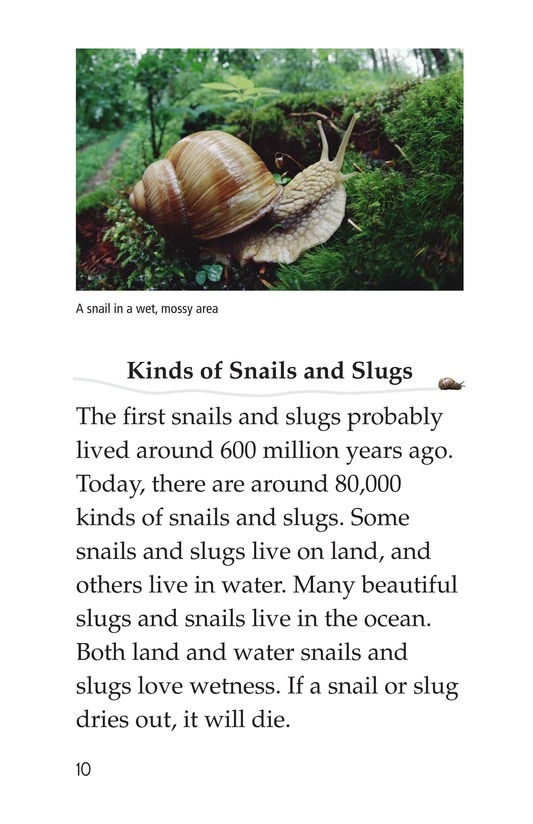 Book Preview For The Secret Lives of Snails and Slugs Page 10