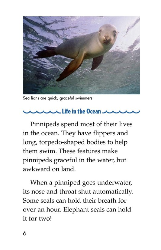 Book Preview For Seals, Sea Lions, and Walruses Page 6
