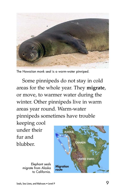 Book Preview For Seals, Sea Lions, and Walruses Page 9