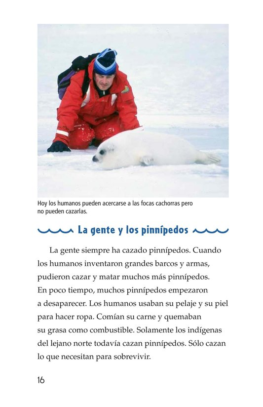 Book Preview For Seals, Sea Lions, and Walruses Page 16