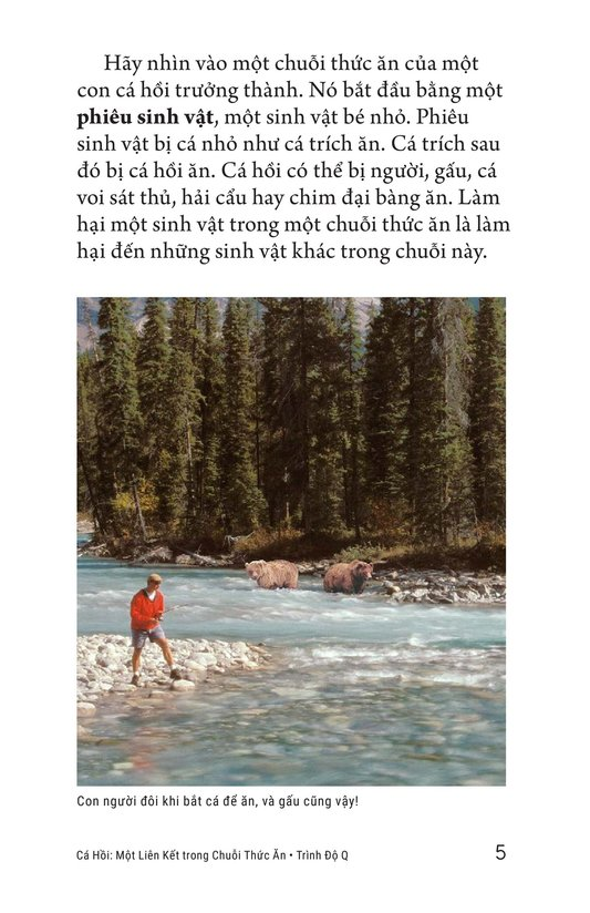 Book Preview For Salmon: A Link in the Food Chain Page 5