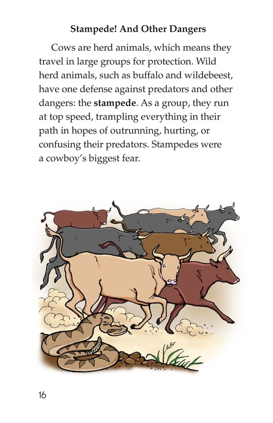 Book Preview For Yee Haw! The Real Lives of the Cowboys Page 16