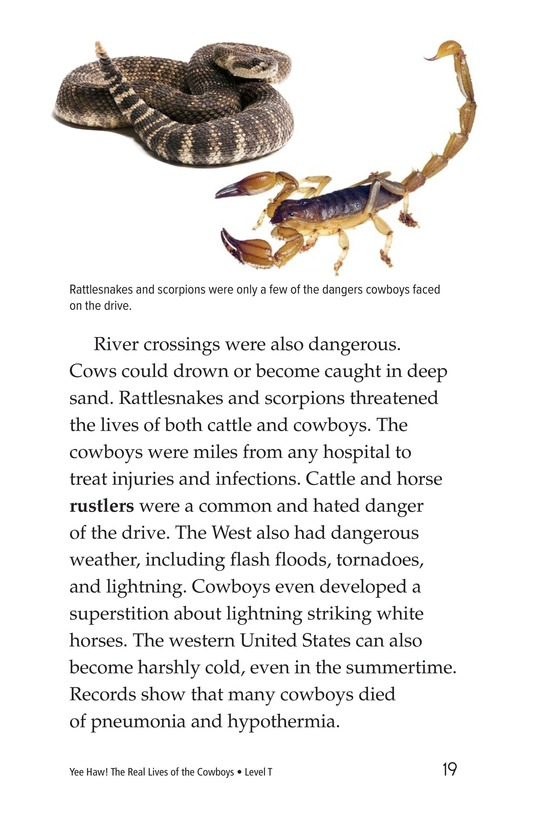 Book Preview For Yee Haw! The Real Lives of the Cowboys Page 19