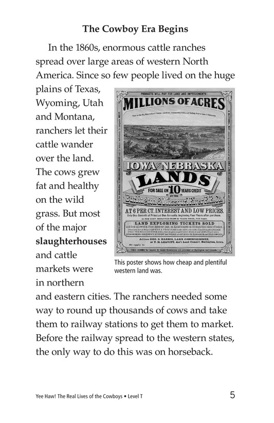 Book Preview For Yee Haw! The Real Lives of the Cowboys Page 5