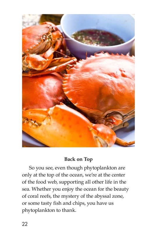 Book Preview For The Amazing Undersea Food Web Page 22
