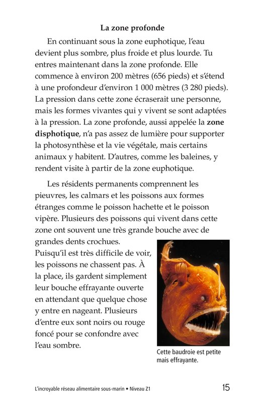 Book Preview For The Amazing Undersea Food Web Page 15