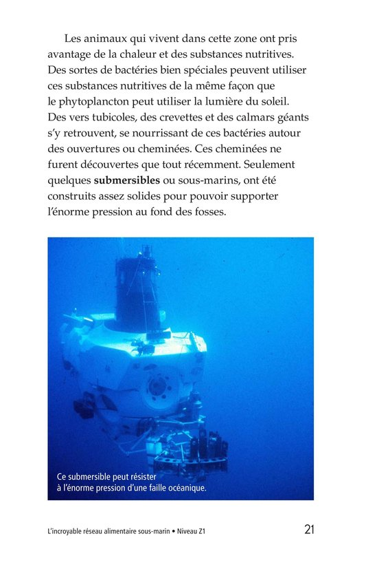 Book Preview For The Amazing Undersea Food Web Page 21