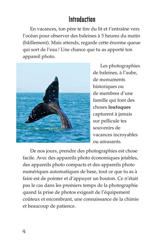 Book Preview For The Art of Photography Page 4
