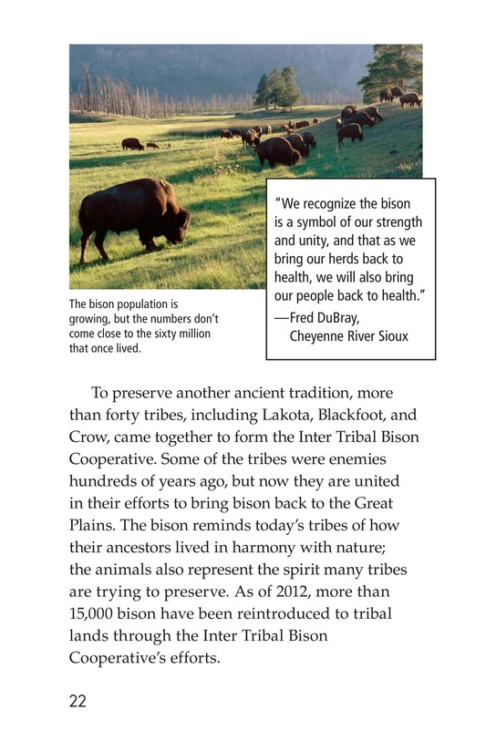 Book Preview For Native Americans of the Great Plains Page 22