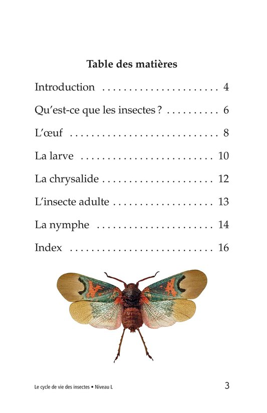 Book Preview For Insect Life Cycle Page 3