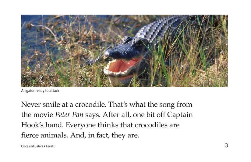 Book Preview For Crocs and Gators Page 3