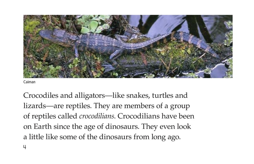Book Preview For Crocs and Gators Page 4