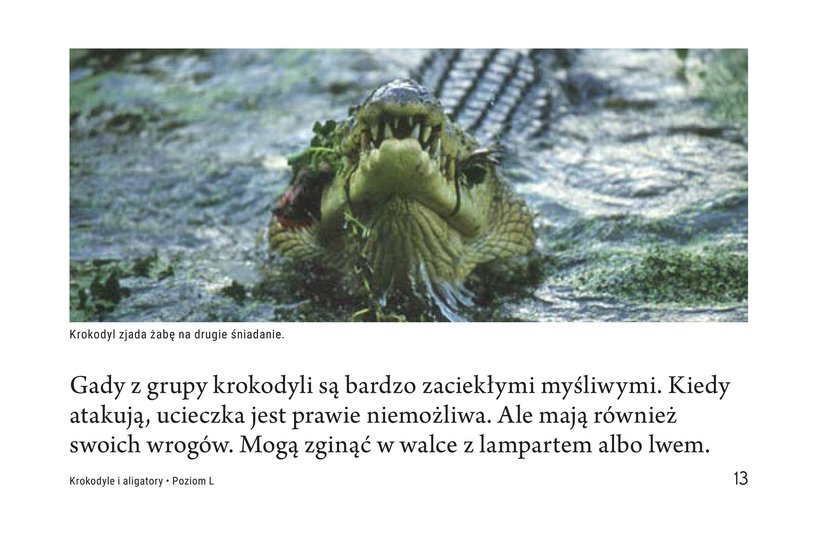 Book Preview For Crocs and Gators Page 13