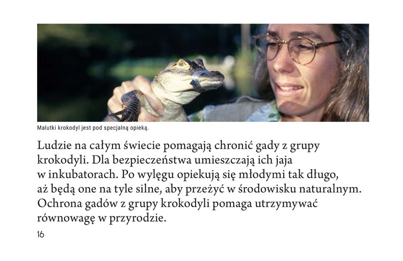 Book Preview For Crocs and Gators Page 16