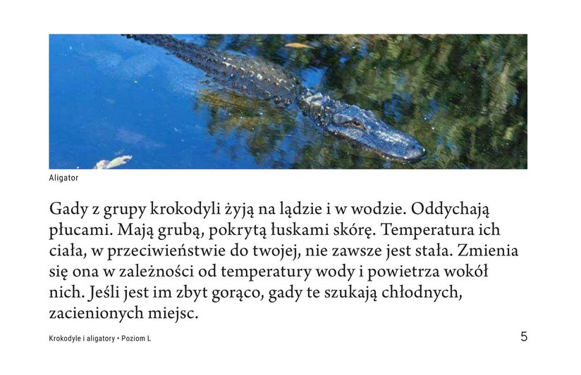 Book Preview For Crocs and Gators Page 5