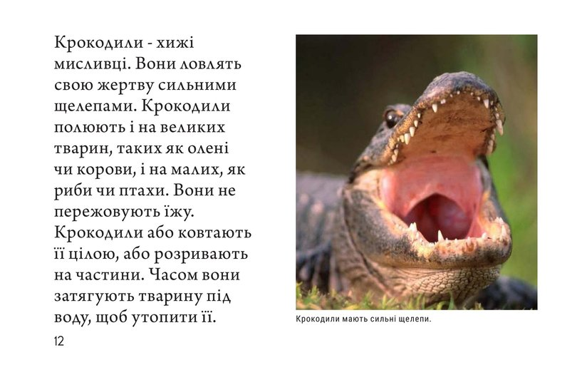 Book Preview For Crocs and Gators Page 12