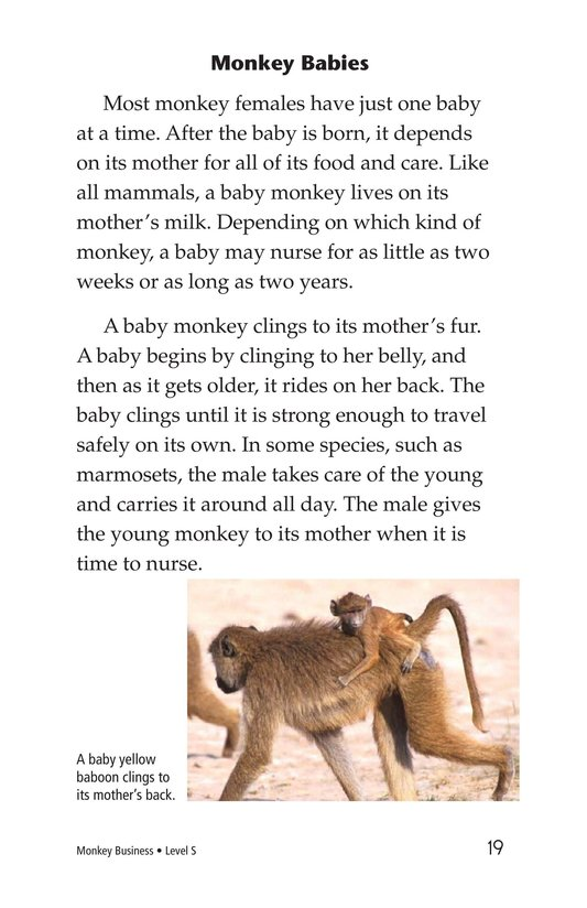 Book Preview For Monkey Business Page 19
