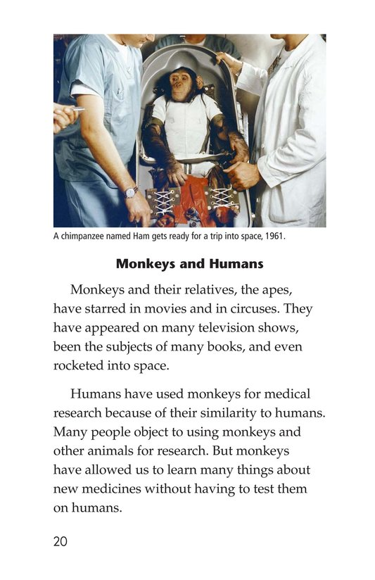 Book Preview For Monkey Business Page 20