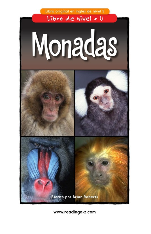 Book Preview For Monkey Business Page 1