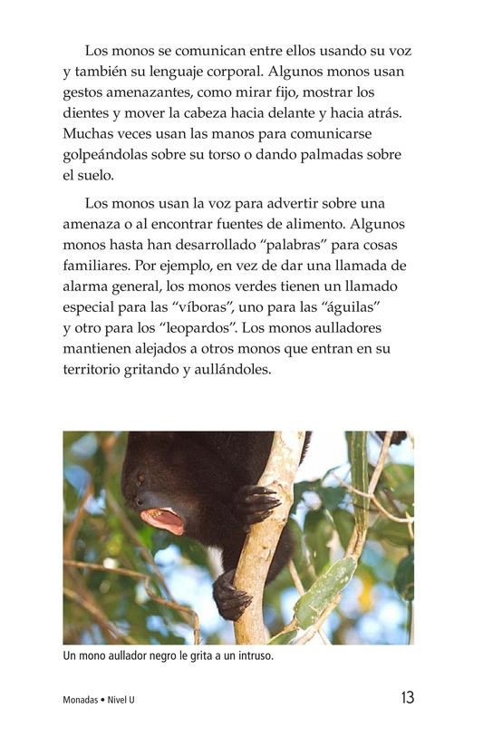 Book Preview For Monkey Business Page 13