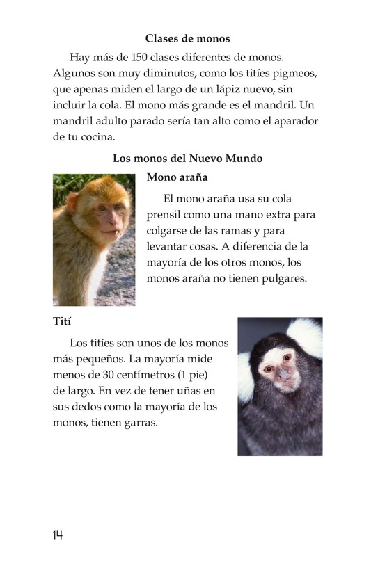 Book Preview For Monkey Business Page 14