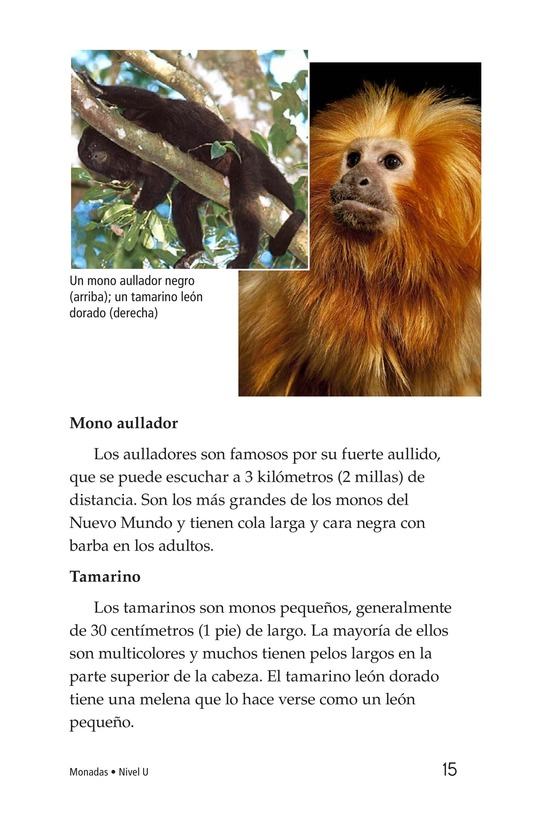 Book Preview For Monkey Business Page 15