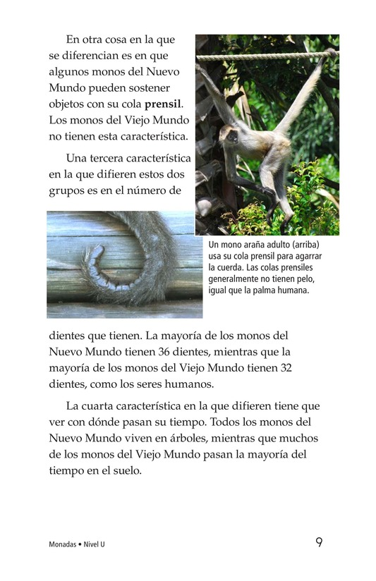 Book Preview For Monkey Business Page 9