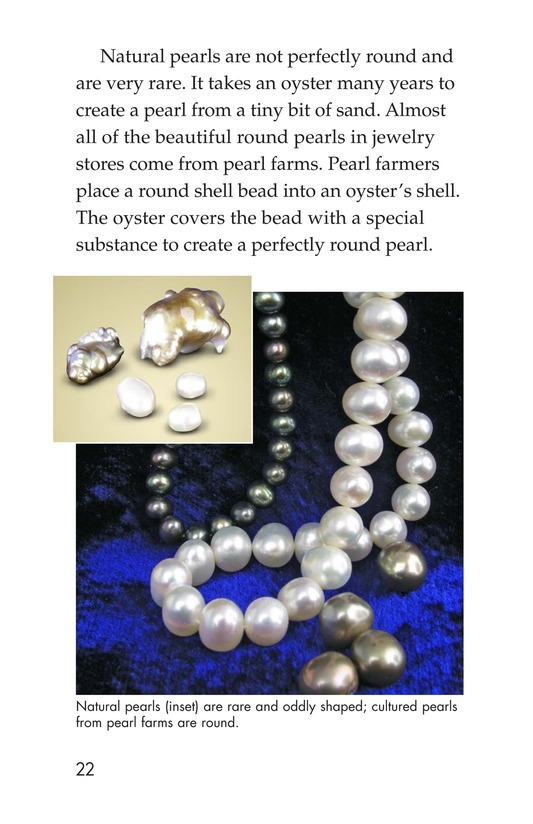 Book Preview For Gems: Treasures from the Earth Page 22