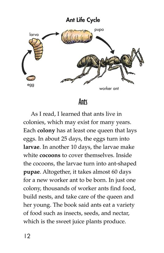 Book Preview For Ants in My Bed Page 12