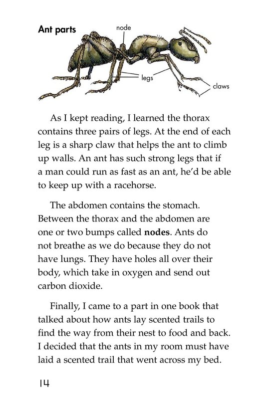 Book Preview For Ants in My Bed Page 14