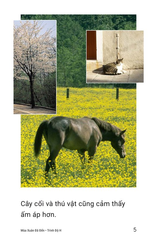 Book Preview For Spring Is Here Page 5