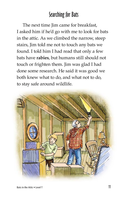 Book Preview For Bats in the Attic Page 11