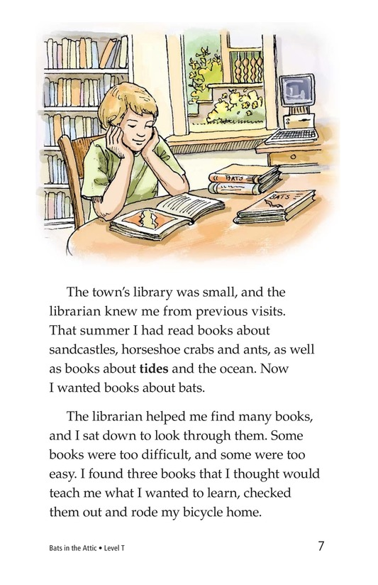 Book Preview For Bats in the Attic Page 7